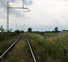 train rails by spetenfia