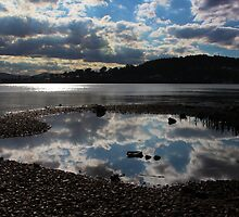 Lake Macquarie, Warners Bay, NSW by Sharon Brown