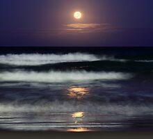 Moonlight Beach by Ann  Van Breemen