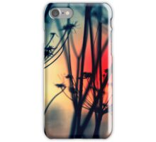 Shapes of Decay iPhone Case/Skin