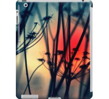 Shapes of Decay iPad Case/Skin
