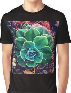 Stunning Succulent. Graphic T-Shirt
