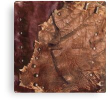 Western Worn Saddle Leather Look Canvas Print