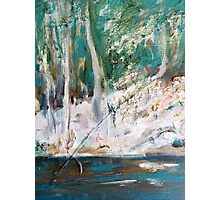 Sunlight in the  Emerald Forest Photographic Print
