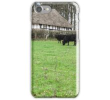 Winter in Wales iPhone Case/Skin