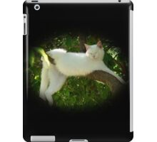 Lazy Twisted Cat-robatic Cat-tortionist Kitty iPad Case/Skin