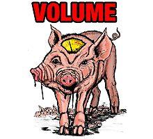 Volume pig Photographic Print