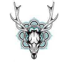 Mandala deer Photographic Print