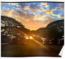 Sun setting through the rain Poster