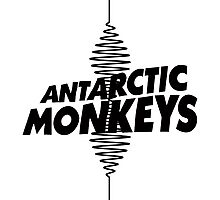 Antarctic Monkeys Photographic Print