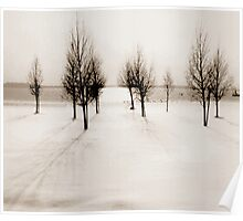 Landscape in snow Poster