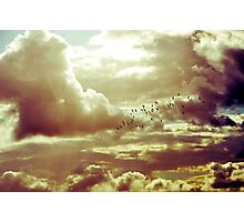Flock of birds flying in heavenly clouds  Photographic Print