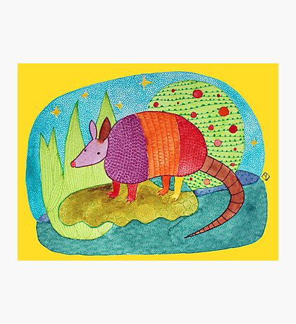 Happy Armadillo Photographic Print