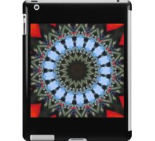 Modern Mandala Art 7 iPad Case/Skin
