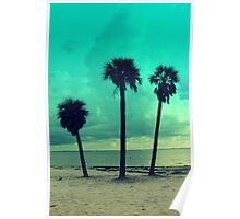 white tropical beach Poster