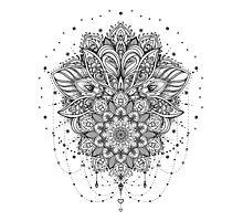 Ornate Lotus Flower Photographic Print