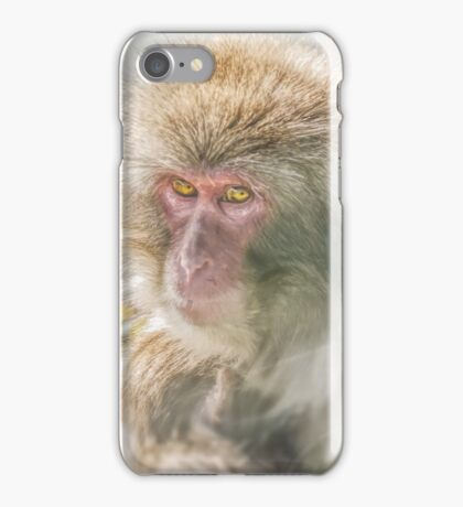 Snow Monkey iPhone Case/Skin