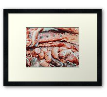 Sausages And Steaks On Barbecue Grill Framed Print