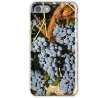 Grapes Vineyard  iPhone Case/Skin