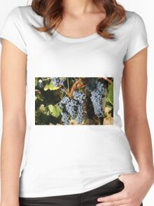 Grapes Vineyard  Women's Fitted Scoop T-Shirt