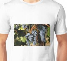 Grapes Vineyard  Unisex T-Shirt