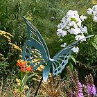 Butterfly Garden by ctheworld
