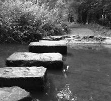 Stepping Stones by NatalieMirosch