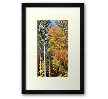 Georgia in Autumn Framed Print