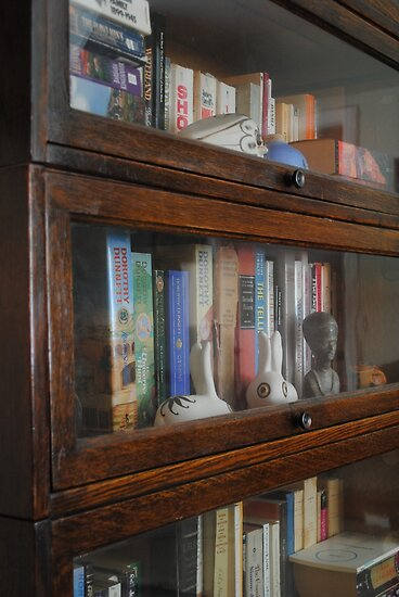 Bookcase by goddarb