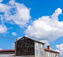 Hawkinsville Georgia - Rural Industrial Memories by Mark Tisdale