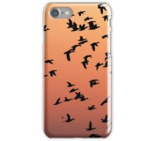Flock f Birds at Sunset iPhone Case/Skin