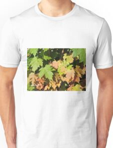 Autumn Is A Second Spring T-Shirt
