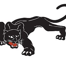 Brookside Panther by davidyarb