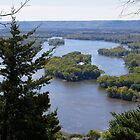 Upper Mississippi River, looking downriver from Buena Vista Park, Alma, WI by rvjames