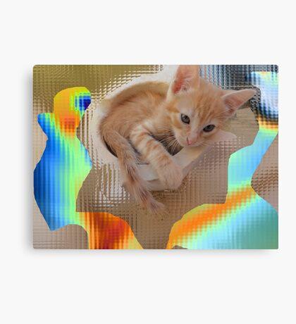 Kitten - I´m so cute - by Ana Canas Canvas Print