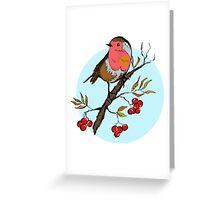 Winter design with illustration of Robin bird Greeting Card