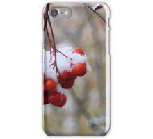 bright mountain ash under snow iPhone Case/Skin
