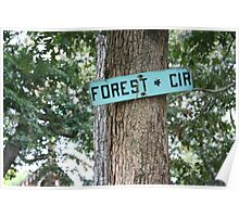 Forest Circle. Poster