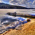 Winter on Lonely Lake by Skye Ryan-Evans