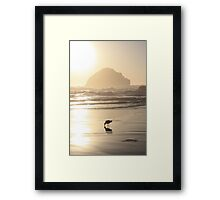 The Gull and the Maiden Framed Print