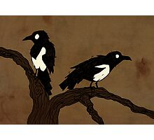 One For Sorrow, Two For Joy... Photographic Print