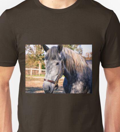 Equine Greeting Unisex T-Shirt