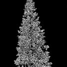 A Black And White Christmas by CarolM