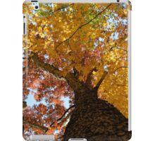 Autumn Rainbow iPad Case/Skin