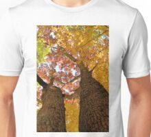 Autumn Rainbow 2 Unisex T-Shirt