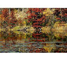 McDonough Lake in Autumn Photographic Print