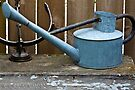 Vintage Watering Can In The Garden by Sandra Foster