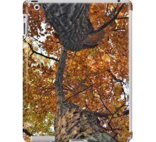 Up The Autumn Oaks iPad Case/Skin