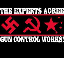 The Experts Agree - Gun Control Works! by Yotees