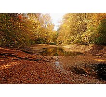 Autumn Beauty At The Pond Photographic Print